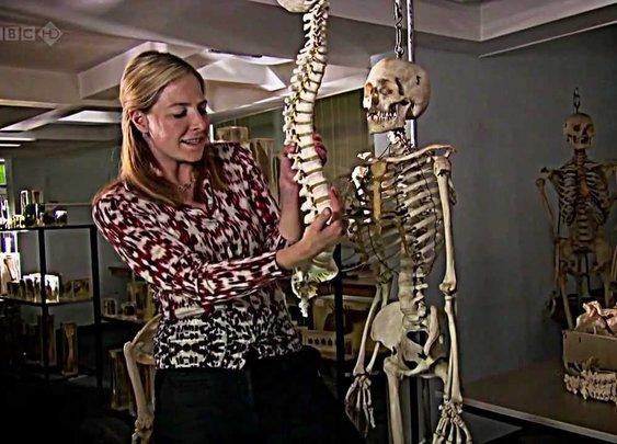BBC Origins of Us 1 of 3 - Bones HDTV - Dr Alice Roberts - YouTube
