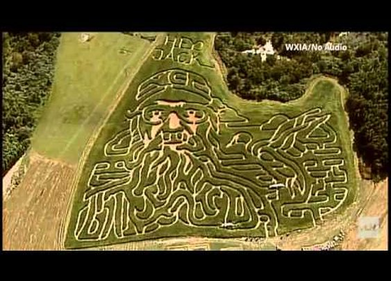 Video: Duck Dynasty's Si Robertson Corn Maze | motorcitytimes.com
