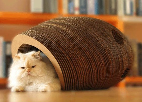 Furniture For Your Lovely Pets