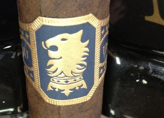 Undercrown Robusto Review - Southern Ash