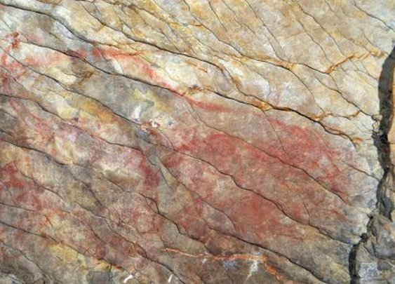 Altxerri cave paintings confirmed as oldest known in Europe | In English | EL PAÍS