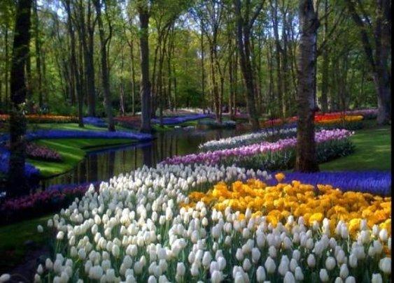 European Classic Style Garden Design Ideas