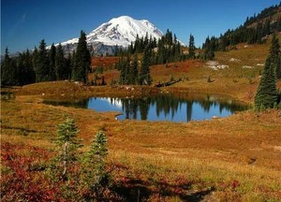 Washington's Classic Fall Color Hikes