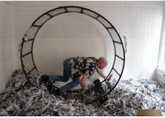 Man offers human-sized hamster wheel — for free! — on Craigslist - NY Daily News