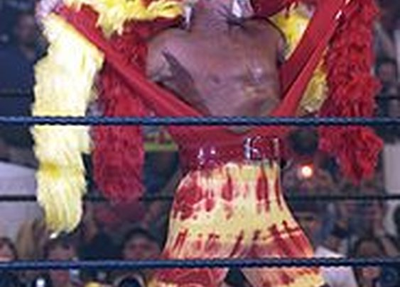 Hulk Hogan now does web hosting - here's 7 other athletes that should follow him.