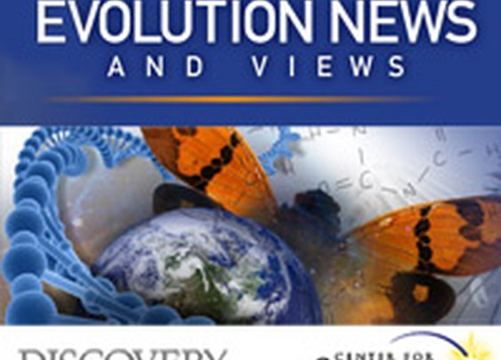 Problems with Peer-Review: A Brief Summary  - Evolution News & Views
