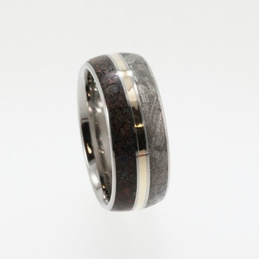 Meteorite Ring / Dinosaur Bone and Meteorite by jewelrybyjohan