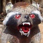 Burton's Raccoon Sloppy Joes | Redneck Recipes