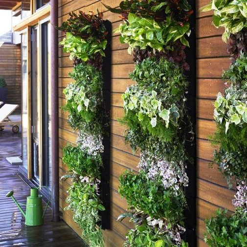 Home Green Wall Plants Benefit, Design and Decoration Ideas