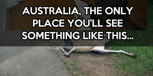 Things are a little different in Australia
