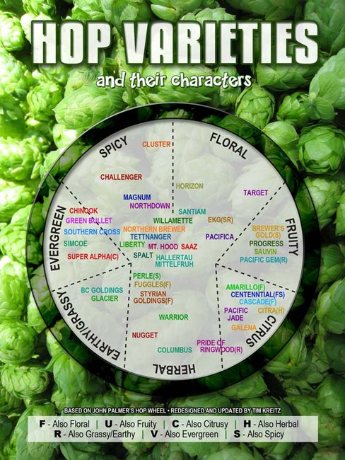 Hop Varieties Chart