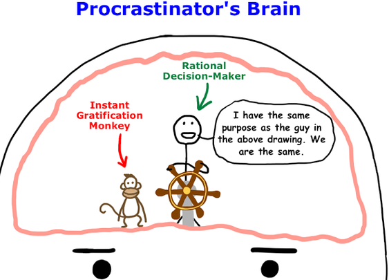 wait but why: Why Procrastinators Procrastinate