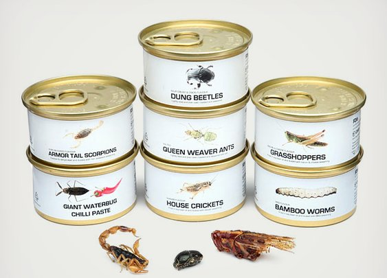 Canned bugs!