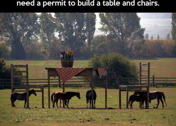 One very clever farmer…