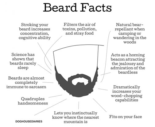 11 key facts why men should have beards [Comic] | Reviews, news, tips, and tricks | dotTech