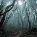 Gallery: 20 Terrifying Trails Around The World