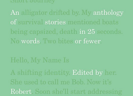 Hint Ficition (Stories in 25 Words or Less) : 101 or Less