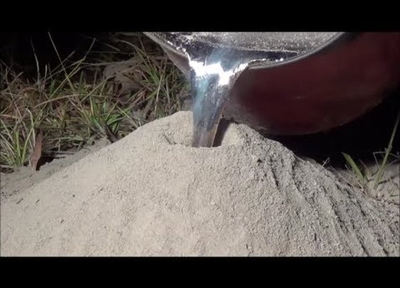 Casting a Fire Ant Colony with Molten Aluminum (Cast #043) - YouTube