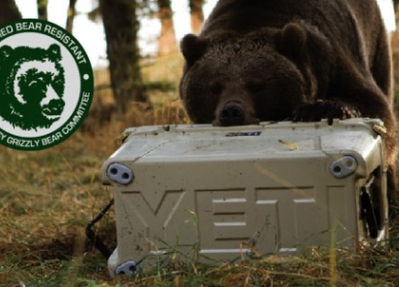 Yeti - bear proof coolers