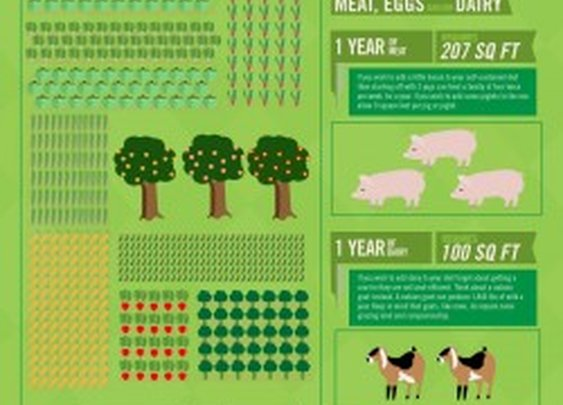How Big A Backyard Do You Need To Live Off The Land? | Visual.ly