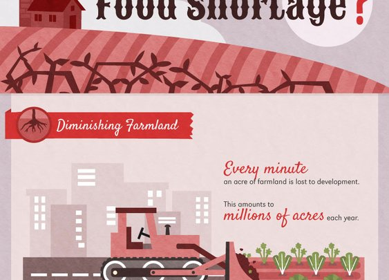 Are We Heading for a Food Shortage?
