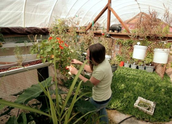 Garden Pool | A nonprofit organization to develop and teach sustainable ways to grow food.