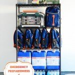 Emergency Preparedness | A Bowl Full of Lemons