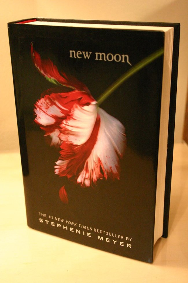 Hollow book safe New Moon Stephanie Meyer by Hope & Grace Pens
