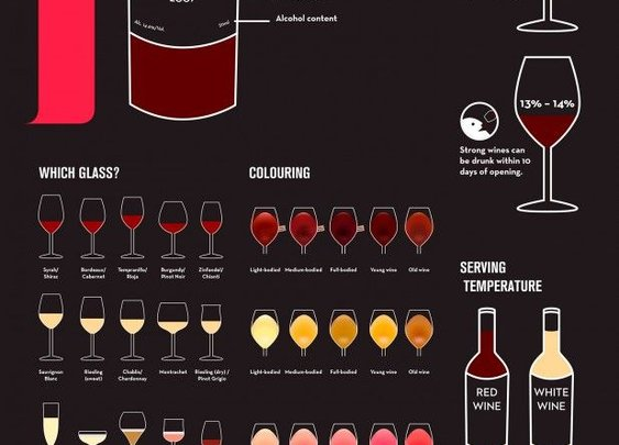 Men's Basics:  A Beginner`s Guide to Wine