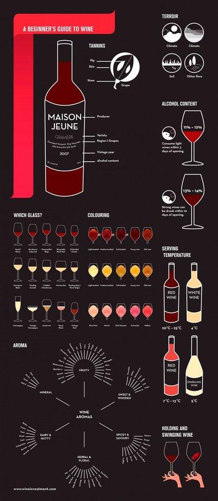 Men's Basics:  A Beginner`s Guide to Wine