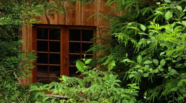 Boat Builder Constructs A House In An Oregon Forest For $11,000