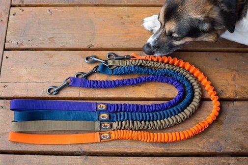 Bungee Dog Leash