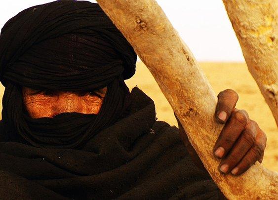 Orphans of the Sahara