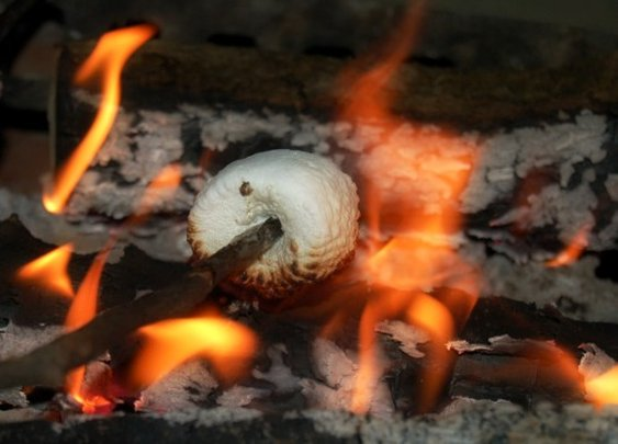 How to Roast a Marshmallow