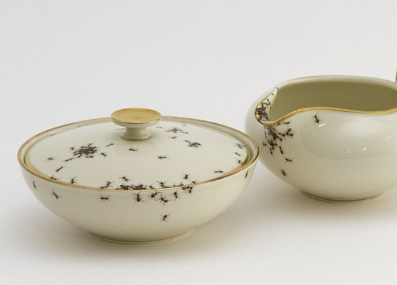 Ew Ew Ew: Dishware Covered in Ants | Incredible Things