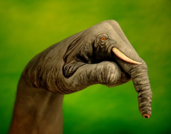 Artist Guido Daniele Paints Hands to Make Works of Art