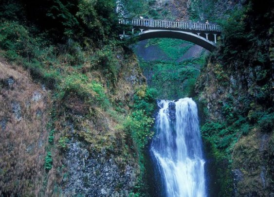 A Year Of Family Hikes   Travel Oregon