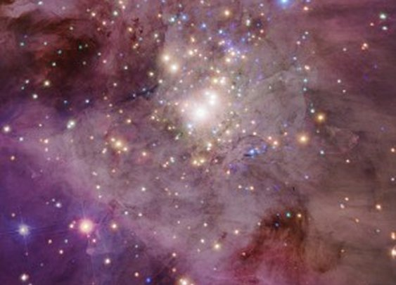 We Are a Cosmic Accident: Dark Energy and the Multiverse