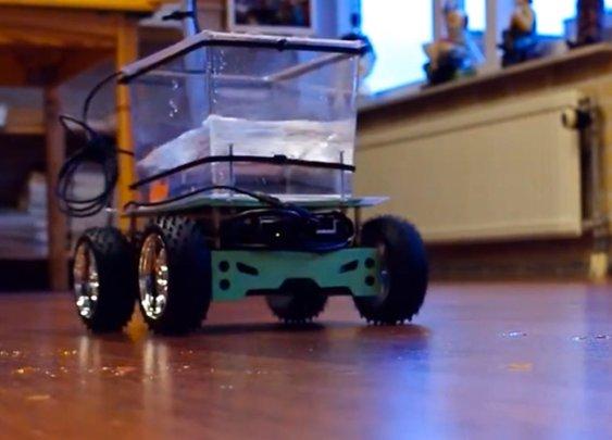 'Fish on Wheels' lets a goldfish drive a go-kart