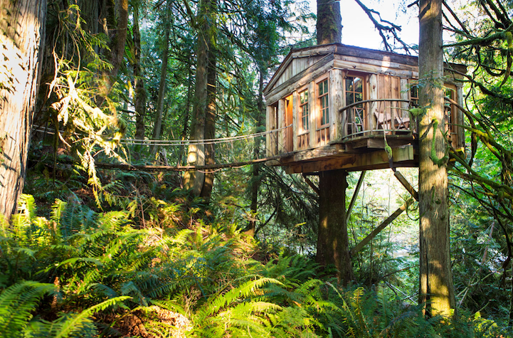 This Treehouse is a Hotel