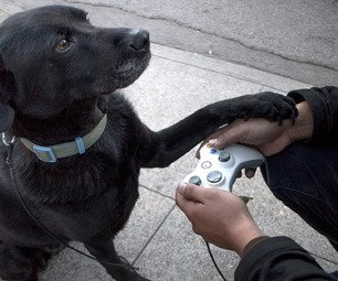 Game controller dog leash