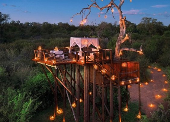 Treehouse Hotels In South Africa Let You Sleep In The Wild