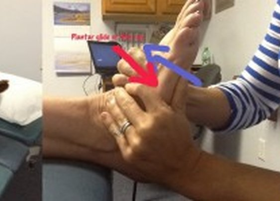 In Touch Physical Therapy Blog
