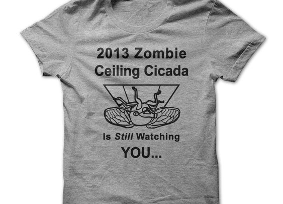 2013 Ceiling Cicada - Apocalyptic Zombie Insect