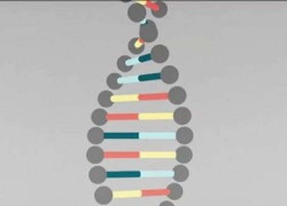 DNA Explained