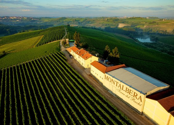 Montalbera: Italian Vineyard and Winemaker