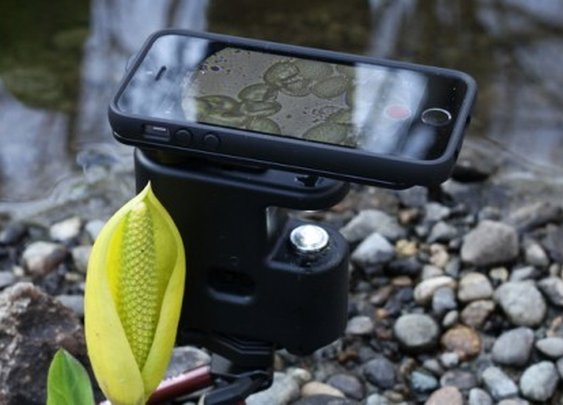 MicrobeScope combines your iPhone with a microscope