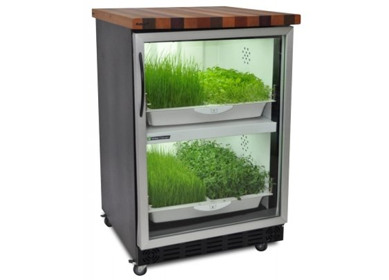 The Urban Cultivator Home, a garden in the kitchen  | Baxtton