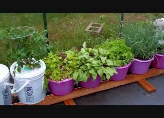 How To Build The Self Watering Rain Gutter Grow System! (101) - YouTube
