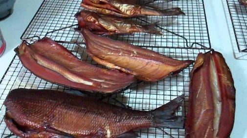 I Am Smoking Whitefish, Northern Pike and Rainbow Trout! Yum ,Yum,Yum! - YouTube